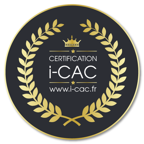 Certified painter i-CAC N° 017/493