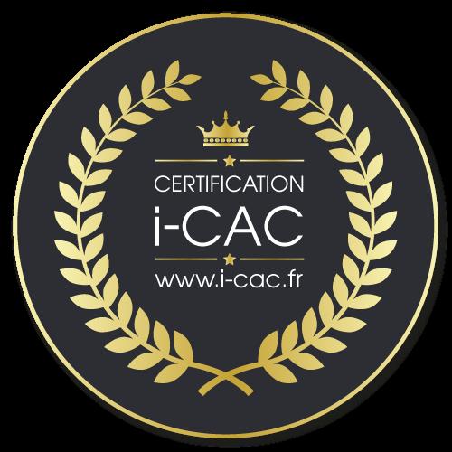 Je suis un Artiste Peintre Professionnel certifié I-CAC